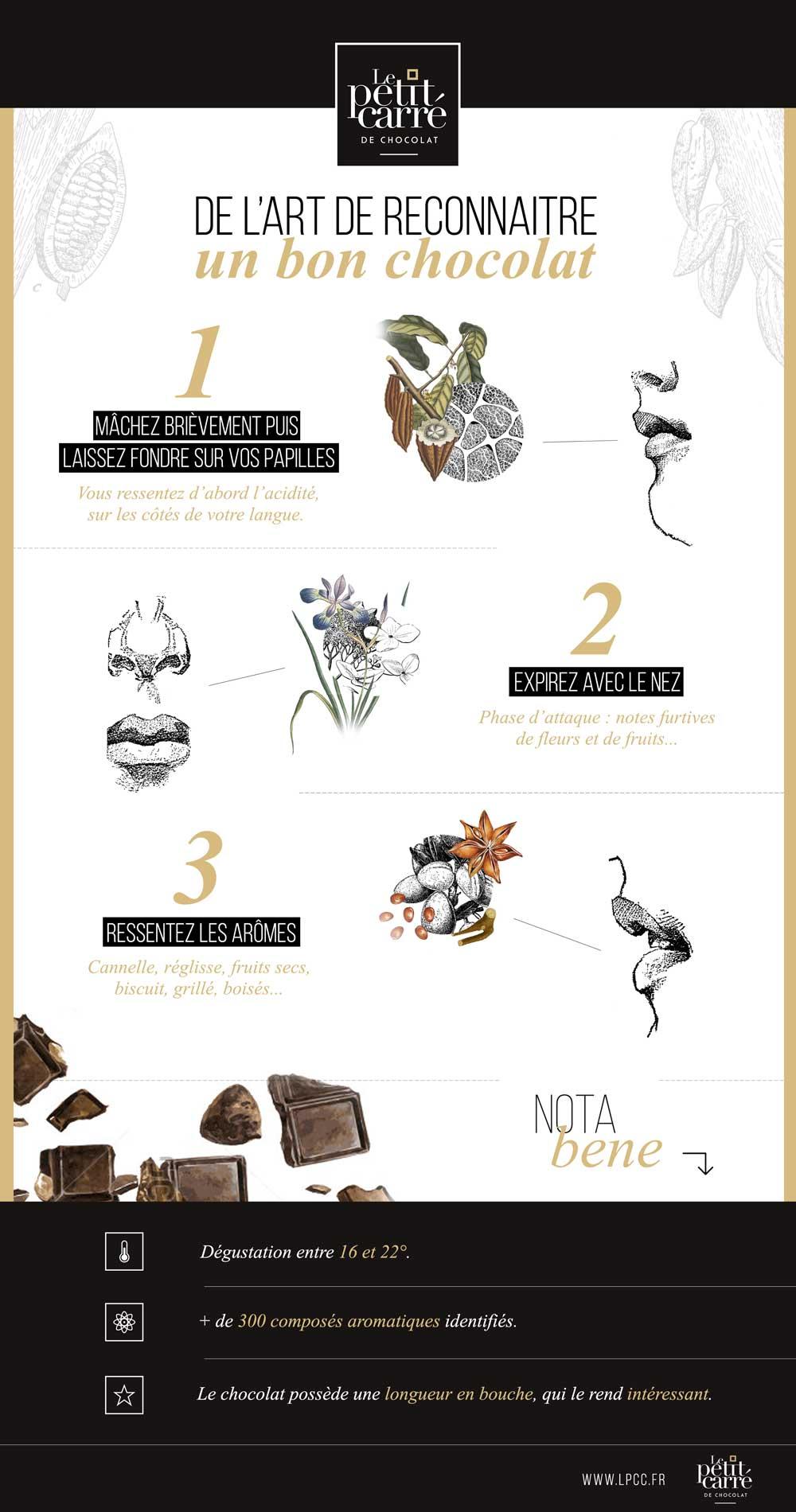 Dégustation du chocolat grand cru Le petit Carré de Chocolat